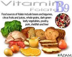 vit b voeding
