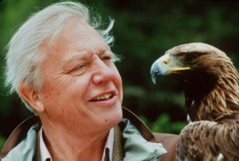 David Attenborough showing his typical fascination with animals and plants