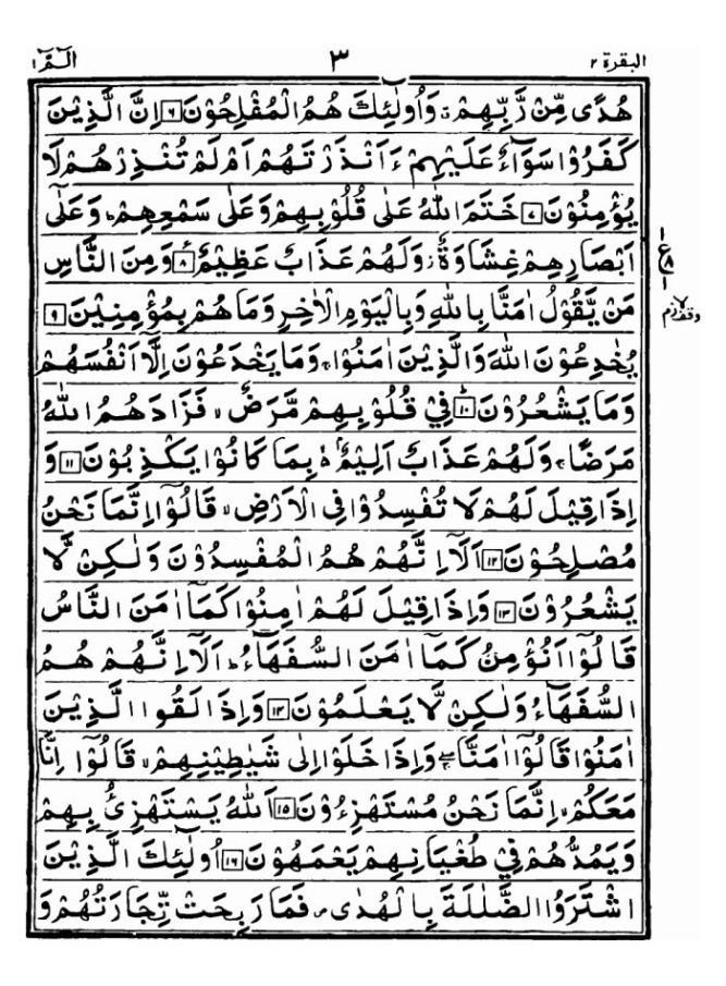 arabic004