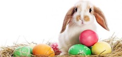 For the Muslim Times' extensive collection on Easter, please click here