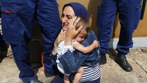 refugee 7