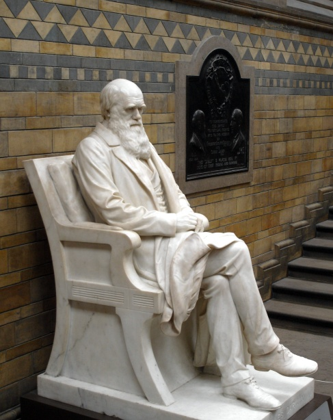 Charles_Darwin_statue_5665r