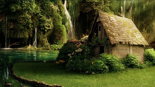 House in Nature