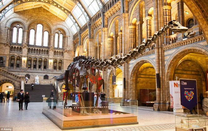 the-museum-of-natural-history-in-london