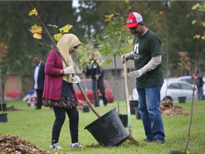 To celebrate Canada's 150th and Windsor's 125th, the Ahmadiyya Muslim Community of Windsor planted 150 trees in Forest Glade on Saturday, Oct. 14, 2017. Sanaa Mian and her father Waseem Kaleem Mian plant a tree during the event. DAN JANISSE / WINDSOR STAR