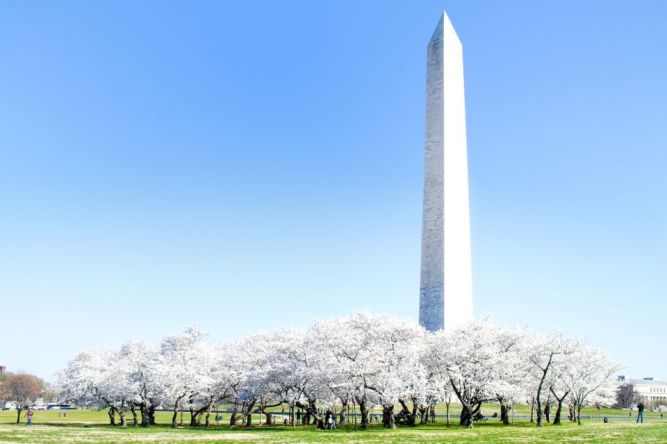 Washington Monument a Getty image
