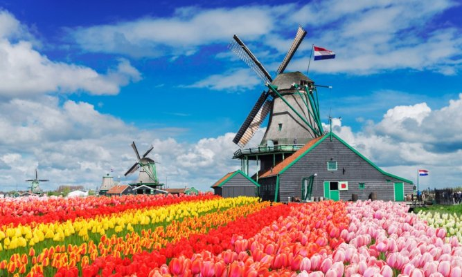 windmills-netherlands