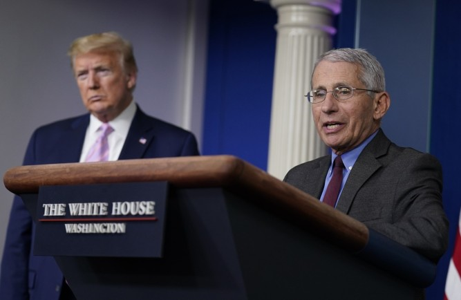 fauci and trump