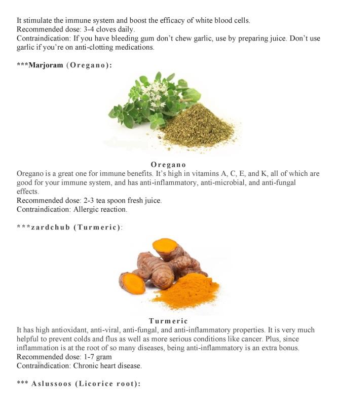 Unani Medicine to Boost Immune System-page-004